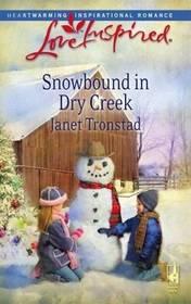 Snowbound in Dry Creek (Dry Creek, Bk 14) (Love Inspired, No 465)