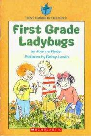 First Grade Ladybugs