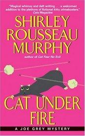 Cat Under Fire (Joe Grey, Bk 2)