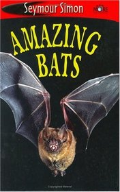 See More Readers: amazing Bats - Level (SeeMore Readers)