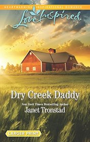 Dry Creek Daddy (Dry Creek, Bk 26) (Love Inspired, No 1162) (Larger Print)