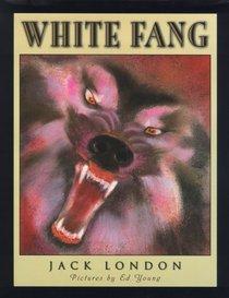 White Fang (Scribner Classics)