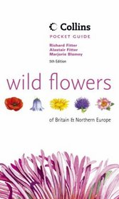 Wild Flowers of Britain and Northern Europe (Collins Pocket Guide)