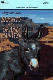 Brighty Of The Grand Canyon- Kidspicks 2001
