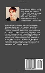 Amish Mystery: Plain Secrets (Ettie Smith Amish Mysteries) (Volume 17)