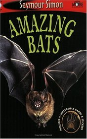 Amazing Bats: SeeMore Readers Level 1 (Seemore Readers)