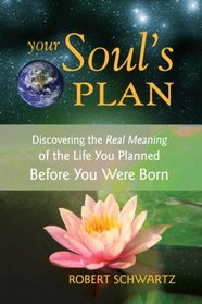Your Soul's Plan (previously published as Courageous Souls)