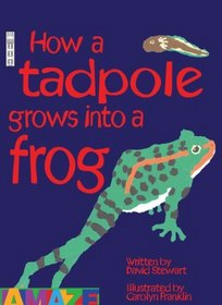 How This Tadpole Turns into a Frog (Amaze) (Amaze)