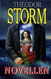 Theodor Storm. Novellen