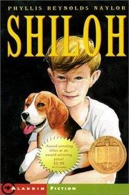 Shiloh/Newbery Summer