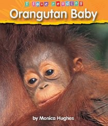 Orangutan Baby (I Love Reading)