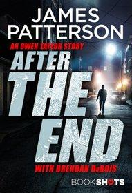 After the End (Owen Taylor, Bk 2)