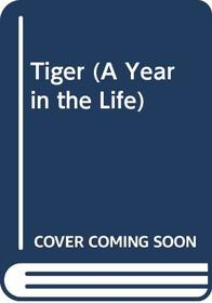Tiger (A Year in the Life)