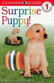 DK Readers: Surprise Puppy (Level 1: Beginning to Read)