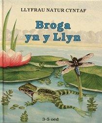 Llyfrau Natur Cyntaf: Broga yn y Llyn (Welsh Edition)