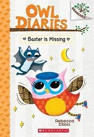 Baxter is Missing (Owl Diaries, Bk 6)