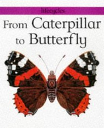 From Caterpillar to Butterfly (Lifecycles S.)