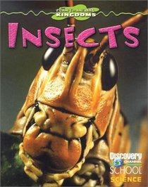 Insects (Discovery Channel School Science)