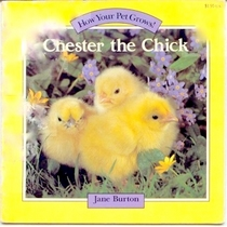 Chester the Chick - How Your Pet Grows!