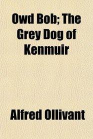 Owd Bob; The Grey Dog of Kenmuir