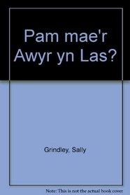 Pam mae'r Awyr yn Las? (Welsh Edition)