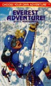Everest Adventure (Choose Your Own Adventure)