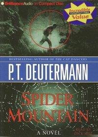 Spider Mountain (Cam Richter, Bk 2) (Audio CD) (Abridged)