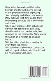 Finding Mary (Amish Twin Hearts) (Volume 3)