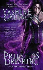 Priestess Dreaming (Otherworld, Bk 16)
