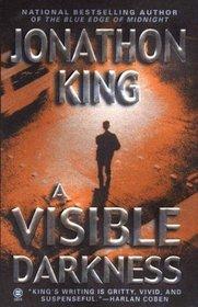 A Visible Darkness (Max Freeman, Bk 2)