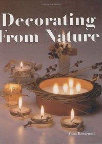 Decorating from Nature (Handicraft Manuals)