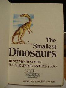 Smallest Dinasours Rlb