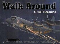 Lockheed C-130 Hercules - Walk Around No. 31