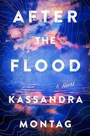 After the Flood: A Novel