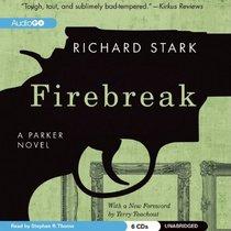 Firebreak (A Parker novel)