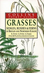 Grasses, Sedges, Rushes and Fern of Britain  Northern Europe (Collins Pocket Guide)