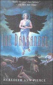 The Darkangel: 1 (The Darkangel Trilogy Series)