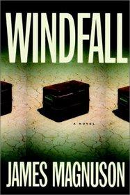 Windfall : A Novel