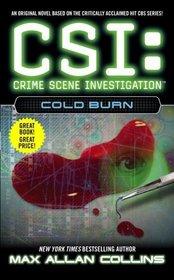 CSI: Cold Burn
