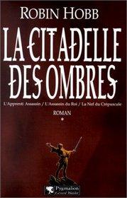 La Citadelle des Ombres, tome 1