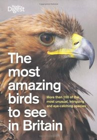 Most Amazing Birds to See in Britain (Readers Digest)