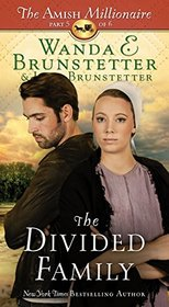 The Divided Family (Amish Millionaire, Bk 5)