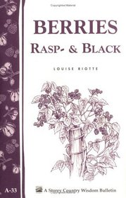 A.33 BERRIES, RASP  BLACK