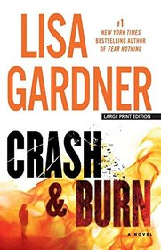 Crash and Burn (Tessa Leoni, Bk 3) (Large Print)