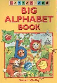 Big Alphabet Book (Letterland)