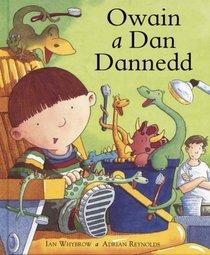 Owain a Dan Dannedd (Nofelau nawr) (Welsh Edition)