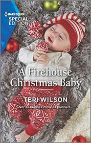 A Firehouse Christmas Baby (Lovestruck, Vermont, Bk 2) (Harlequin Special Edition, No 2807)