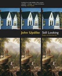 Still Looking: Essays on American Art