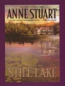 Still Lake (Thorndike Press Large Print Romance Series)