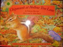 Chipmunk at Hollow Tree Lane (Smithsonian's Backyard)